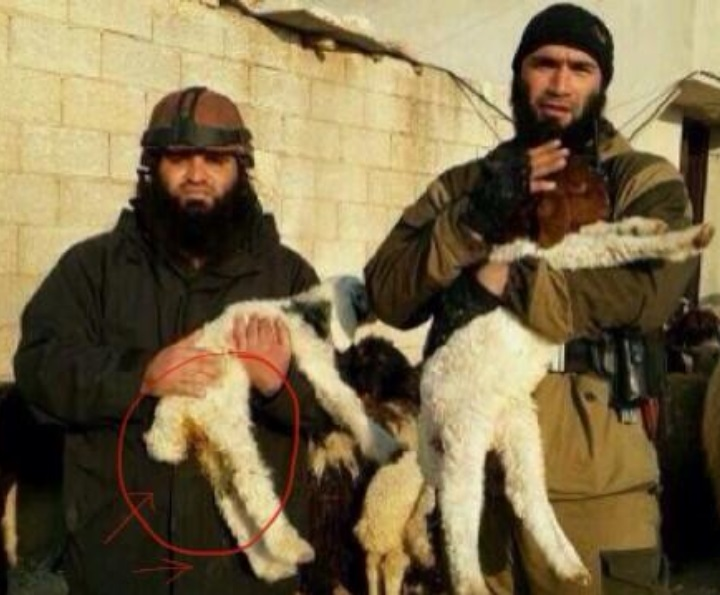Abu Waheeb likes his sheep young